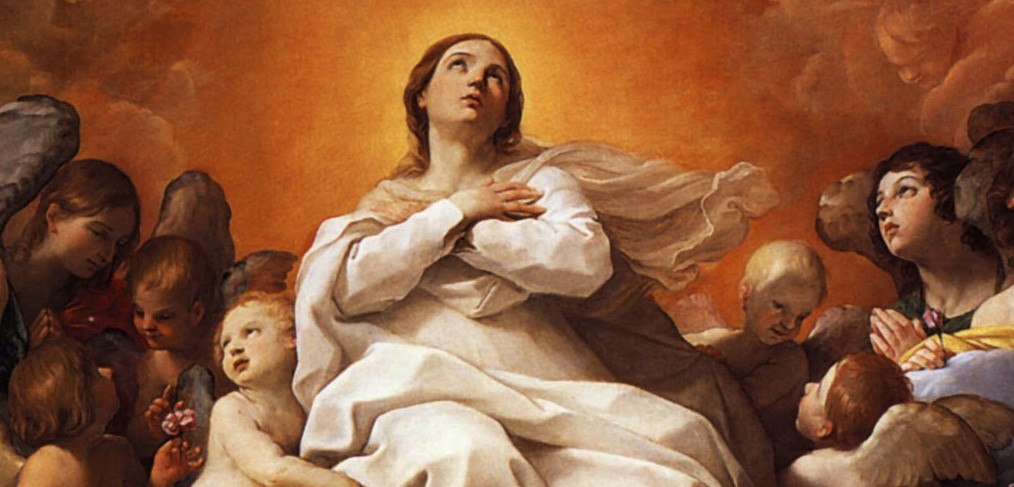 Blessed virgin marys causes