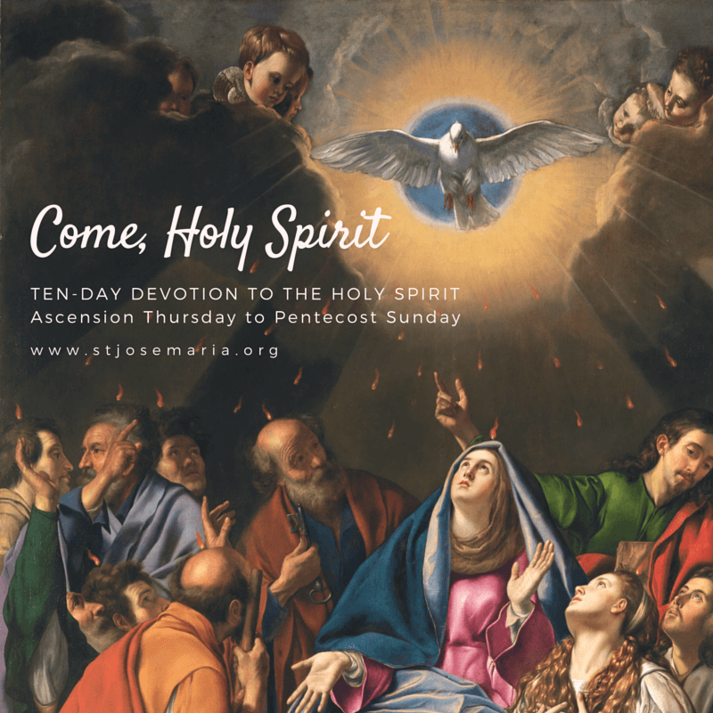 Our Top Picks For Preparing A Feast: Ten-Day Devotion To The Holy Spirit In Preparation For Pentecost